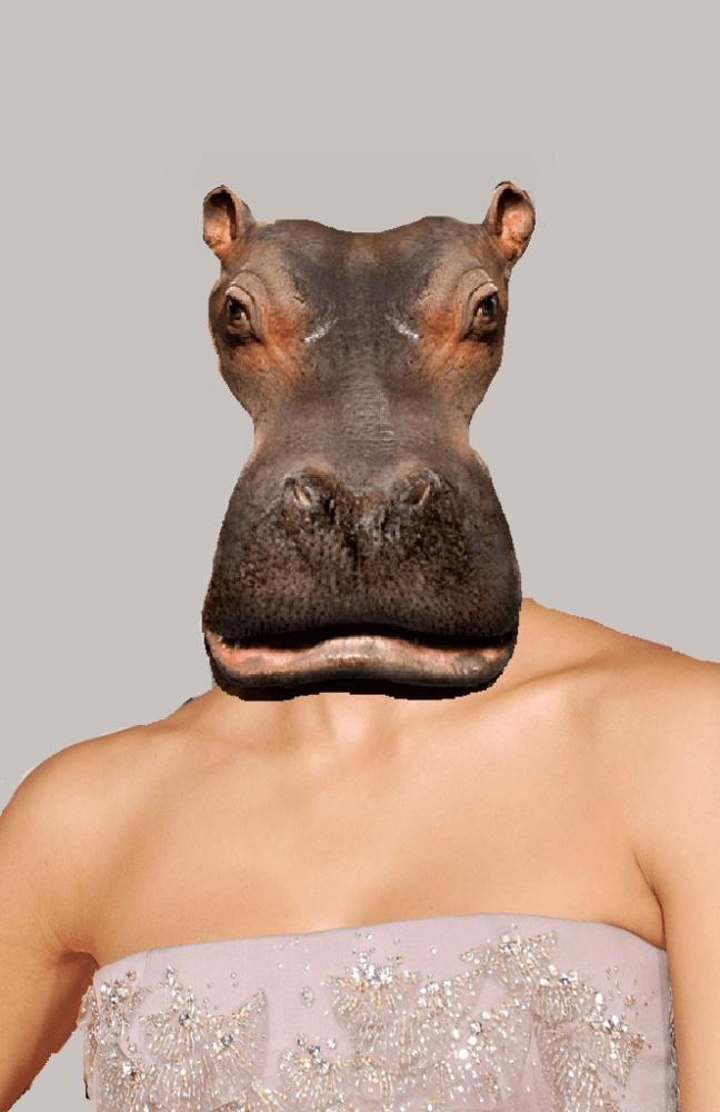 Hippo on...Jessica Alba!
