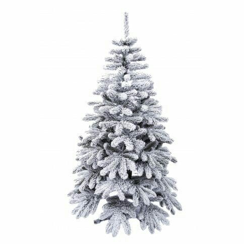 frosty1666234497 - Și brazii au dreptul la Crăciun