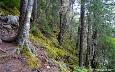 The Rugged Yet Beautiful Chilkoot Trail