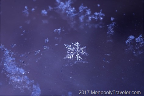 A single snowflake appearing verying lopsided