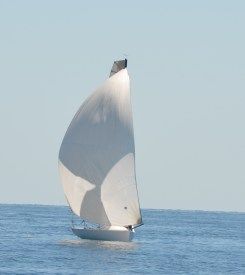 2013 - JULIENAS - (230)