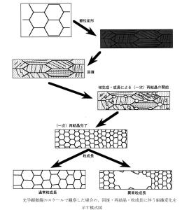 図3.4.3 再結晶の組織変化 (京都大学 辻先生講義資料_Internet)