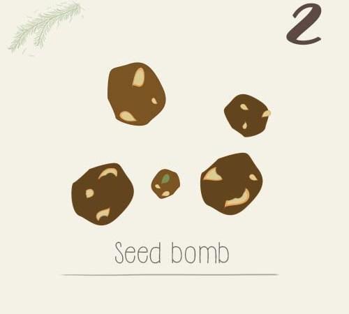 DIY : fabriquer des bombes de graines – activité enfant
