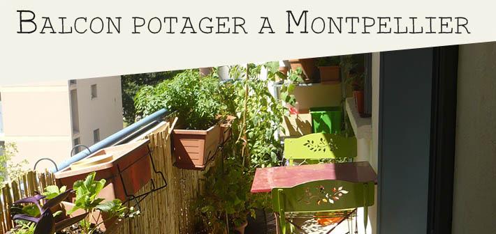 Balcon potager ensoleillé… à Montpellier