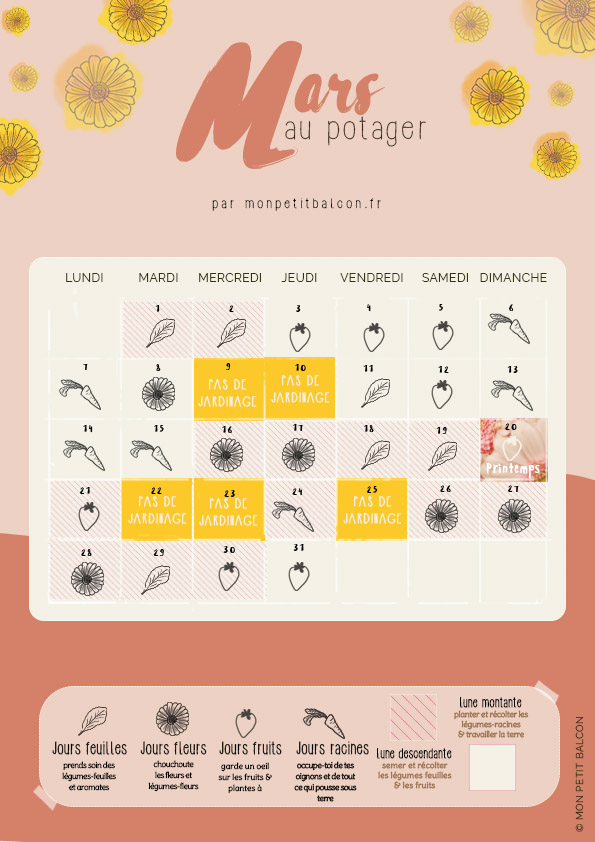 jardiner avec la lune en février le calendrier