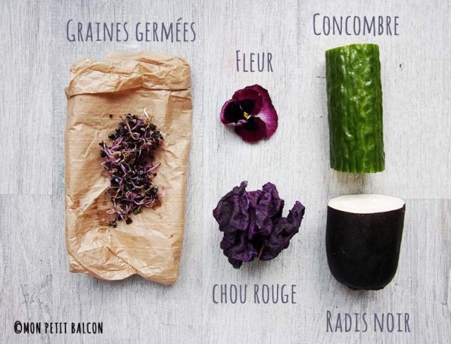 rouleau de printemps légumes d'hiver