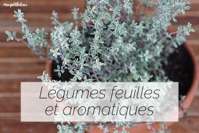 plantes aromatiques et légumes feuilles à faire pousser au potager sur balcon avec le calendrier pour jardiner avec la lune en juillet