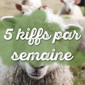 5 kiffs par semaine #3 : abeille, Harry Potter, Nekfeu & tofu fumé