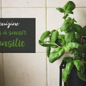 8 choses à savoir pour faire pousser du basilic en pot
