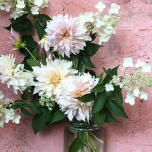 Dahlia en bouquet, mariage, compositions, variétés locales et de saison
