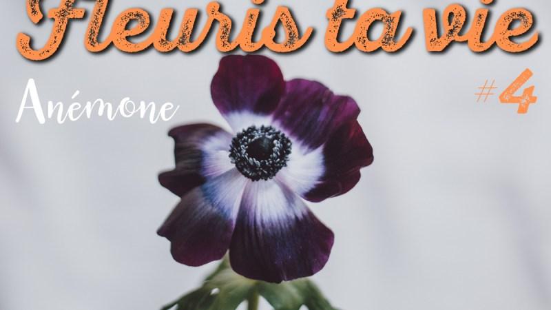 Comment conserver l'anémone en bouquet de fleurs d'hiver ?