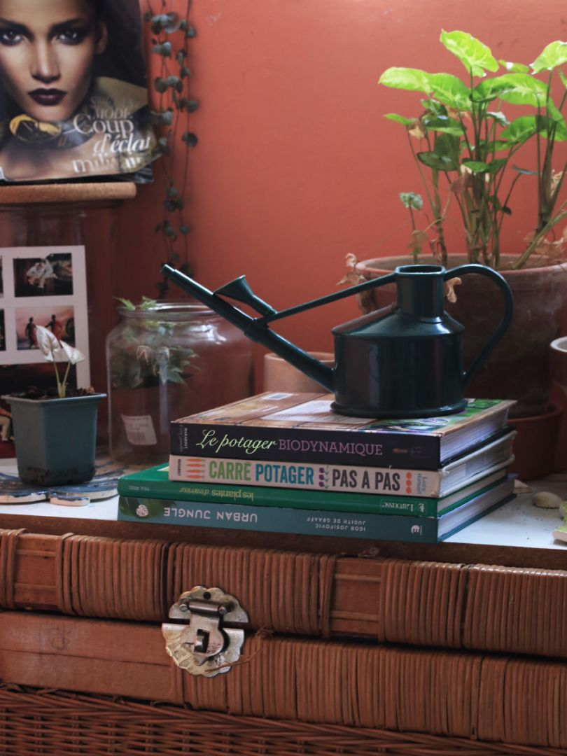 pile de livre pour la jardiner en intérieur pour les débutants