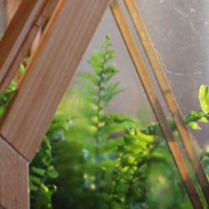 DIY : fabriquer une petite serre en bois pour semis (photo pas à pas)