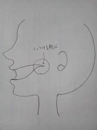 フランス語の発音は難しい。口を鍛える効果的な方法を教えます!