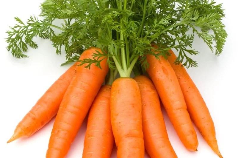 Pourquoi consommer la carotte ?