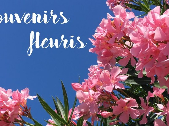 souvenir fleuris