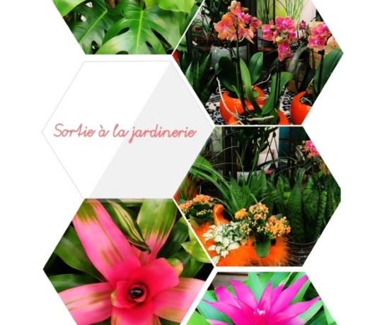 jardinerie-moodboard