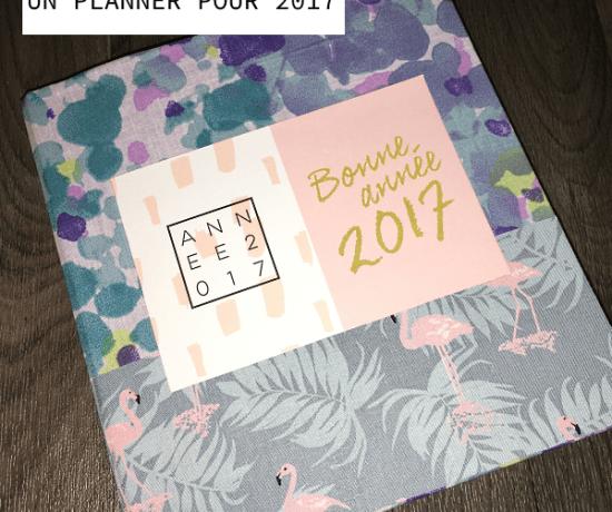 un-planner-pour-2017