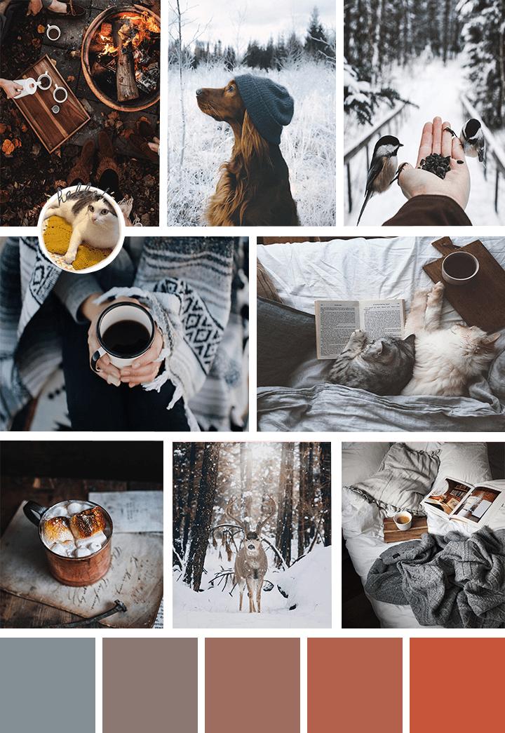 inspi hiver selection suki