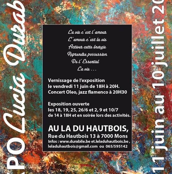 Exposition Lucia Duzabile au La du Hautbois