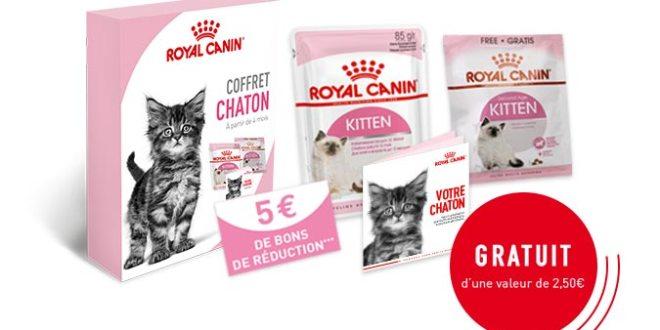 Royal Canin : Kit alimentation chaton gratuit