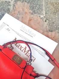 Milan Fashion Week - avant le show de Max Mara