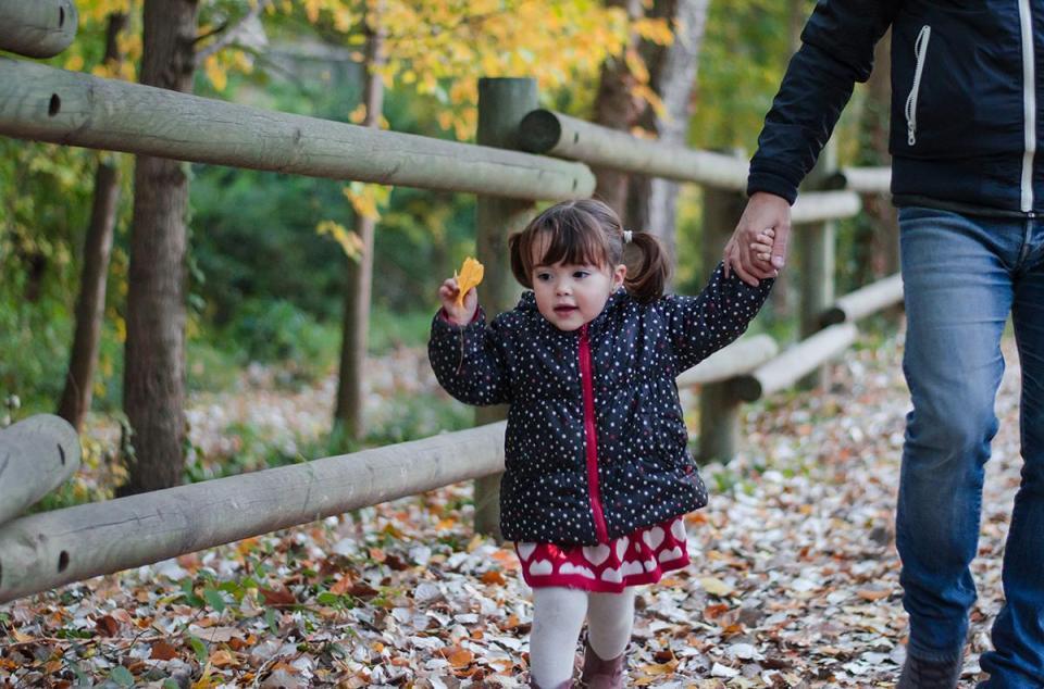 bosque otoño hojas actividades niños