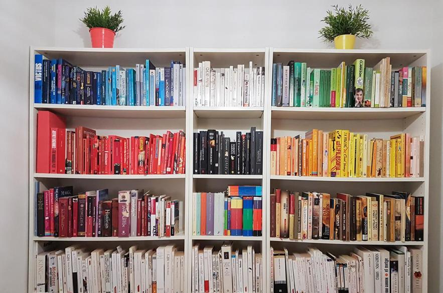 biblioteca personal en casa
