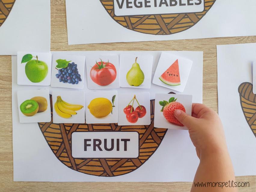 Descargable - Printable - Clasificar comida - Food sorting
