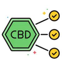 CBD Fakten – rund um das Thema CBD
