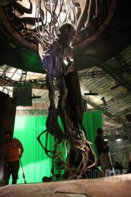 The mummified Pilot.