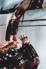 Predator2hanging