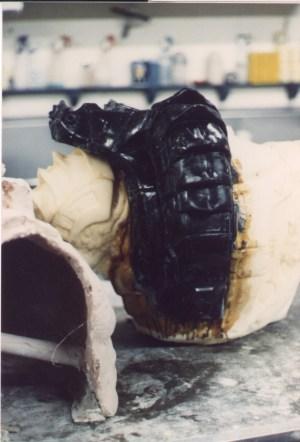 Black fiberglass cast of the backpack.