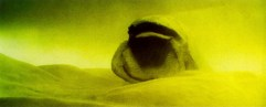 Sandwormyello
