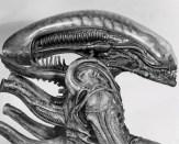 Aliensuito