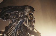 AliensQueenrawrs
