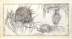 Concept art of the spider creature by John Bisson.