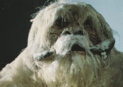 Early version of the close-up puppet.