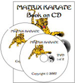 online karate video course