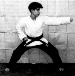 martial art defined