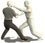 karate kung fu aikido wing chun tai chi chuan