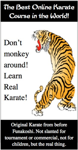 best karate course