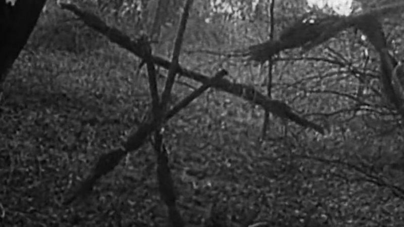 Blair Witch Project Simbolo bastoncini di legno