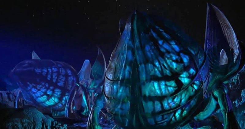 plasma bug starship troopers