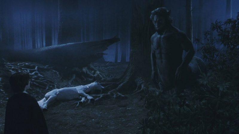 Centauro nel film La pietra filosofale