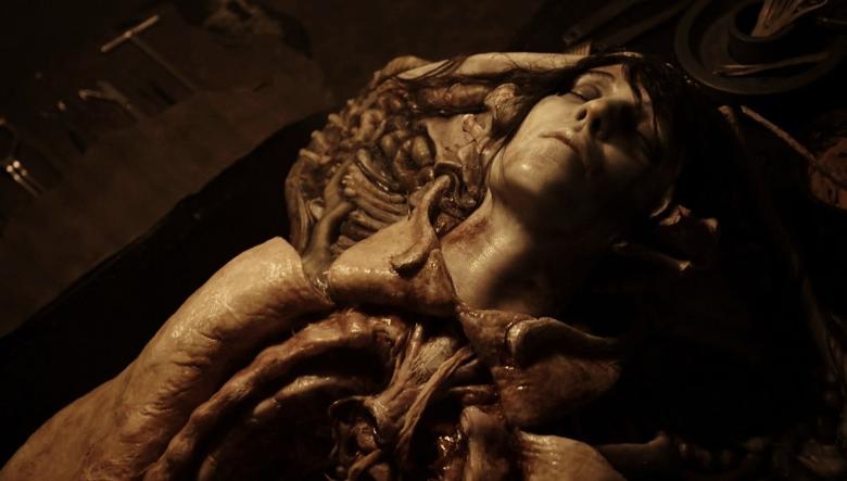 Cadavere della dottoressa Shaw