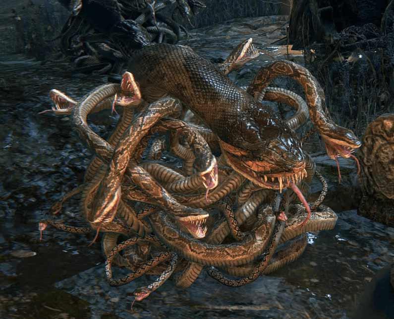 Bloodborne serpi della foresta