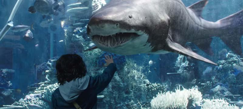 Aquaman squalo toro film
