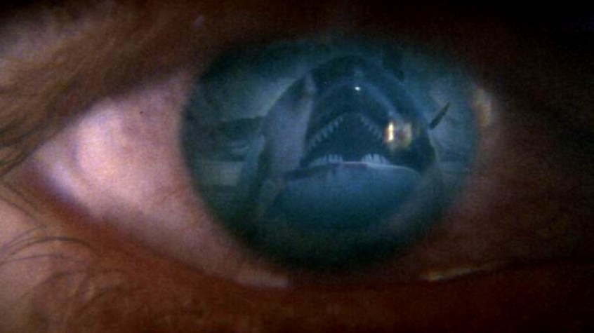 orca-1977-killer-whale-eye-shot.jpg