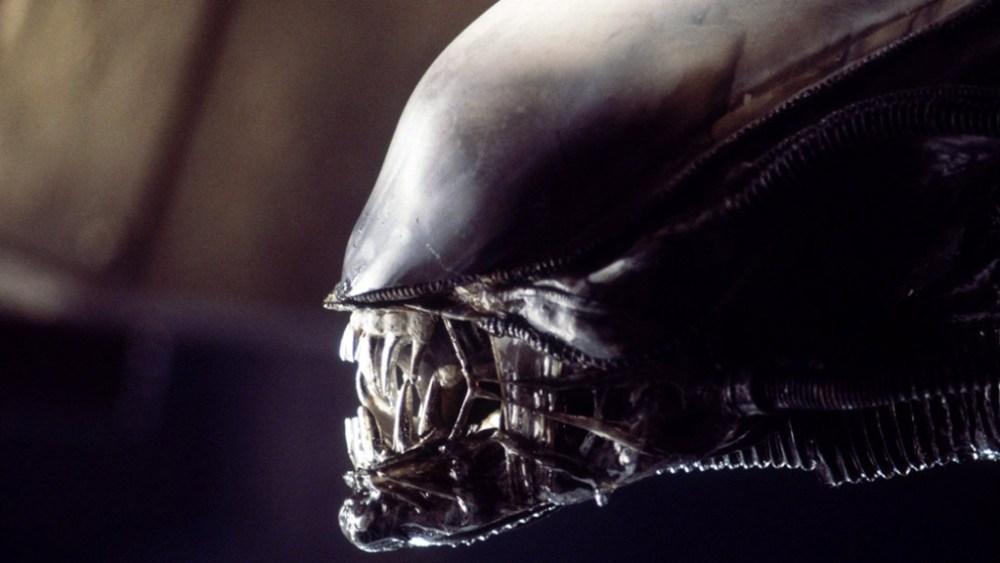 Alien 1979 testa dello Xenomorfo